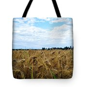 Barley And Sky In Oulu, Finland. Tote Bag