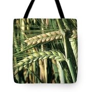 Barley, Green Stage Tote Bag