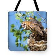Barn Owl Owlet Climbs Out Of Nest Tote Bag