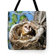 Barn Owl Owlet Says Hello To The World Tote Bag