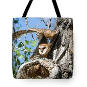 Barn Owl Owlet Stretches High Tote Bag