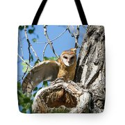 Barn Owl Owlet Stretches Tote Bag