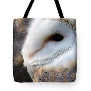 Barn Owl Portrait Tote Bag