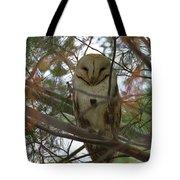Barn Owl Sleeping Tote Bag