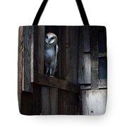 Barn Owl......i See You. Tote Bag