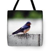 Barn Swallow At Fort Larned Tote Bag