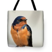 Barn Swallow Perched On A Fence Tote Bag