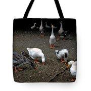 Barn Yard Quackers Tote Bag