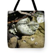 Barnacles And Crabs Tote Bag