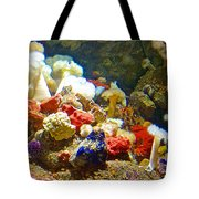 Barnacles And Sea Urchin Among Invertebrates In Monterey Aquarium-california  Tote Bag