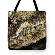 Barnacles At Low Tide Tote Bag