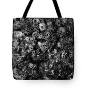 Barnacles Two  Tote Bag
