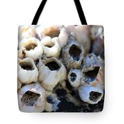 Barnicle Cluster Tote Bag