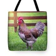 Barnyard Rooster Tote Bag