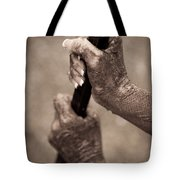 Barred Hands Tote Bag