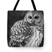 Barred Owl Beauty Tote Bag