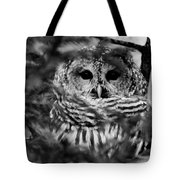 Barred Owl In Black And White Tote Bag