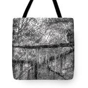 Barred Owl In Monochrome Tote Bag