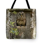 Barred Owl In Nest Box Tote Bag