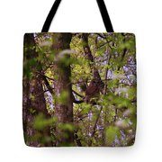 Barred Owl In The Forest Tote Bag
