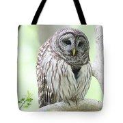 Wings Folded Tote Bag
