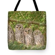 Barred Owlets Nursery Tote Bag
