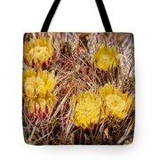 Barrel Cactus Flowers 2 Tote Bag
