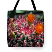Barrel Cactus II Tote Bag