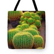 Barrel Cactus Tote Bag