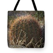 Barrel Cactus Tote Bag