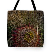 Barrel Cactus Top View Tote Bag