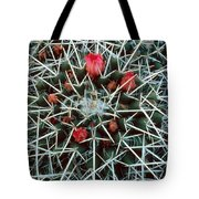Barrel Cactus With Pink Blooms Tote Bag