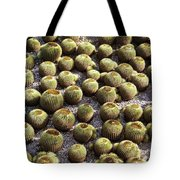 Barrel Garden Tote Bag
