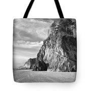 Barren Coast Tote Bag