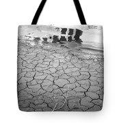 Barren Dry Land Tote Bag