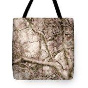 Barren Tree Tote Bag