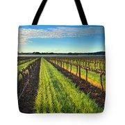 Barrossa Vineyard Sunrise Tote Bag