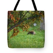 Barton Backyard Tote Bag