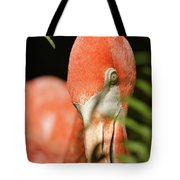 Bashful Tote Bag