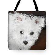 Bashful Puppy Tote Bag