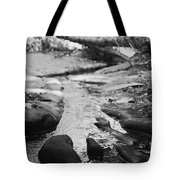 Basin Creek Tote Bag