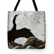 Bask In The Sun Tote Bag