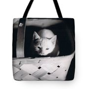 Basket Full Of Charlemagne Tote Bag