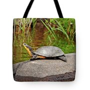 Basking Blanding's Turtle Tote Bag