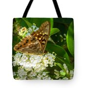 Nature In The Wild - Basking In The Glow Tote Bag