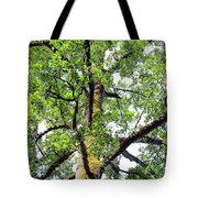 Basking In The Light Of The Lord Tote Bag