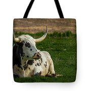 Basking In The Sun Tote Bag