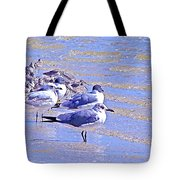 Basking On The Seashore Tote Bag
