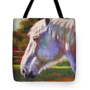 Basquing In The Sun Tote Bag
