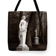 Bassin D'apollon, Versailles Tote Bag